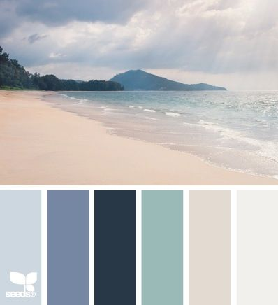Color Palette navy chic