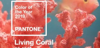 Pantone Living Coral color of the year 2019